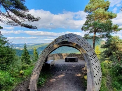 Forest Bathing Inspiration Throughout Scotland - Pine Cone Point - www.chicscotland.com