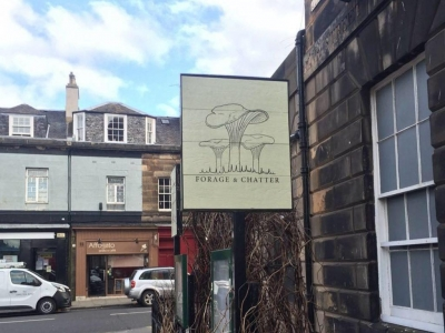 Chic Scotland - Forage and Chatter